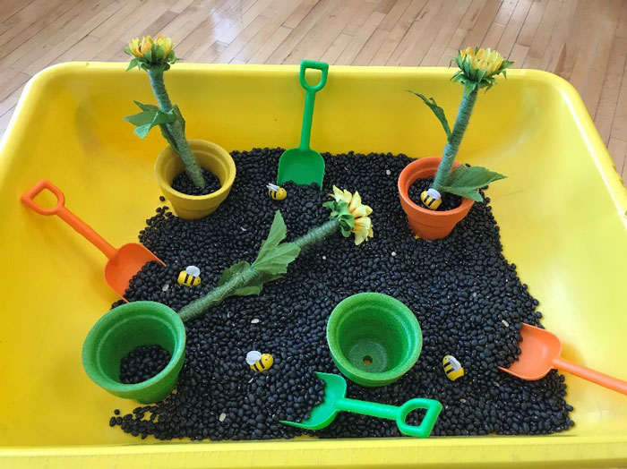 Sensory bin filled with black beans, flowers, and plastic shovels.