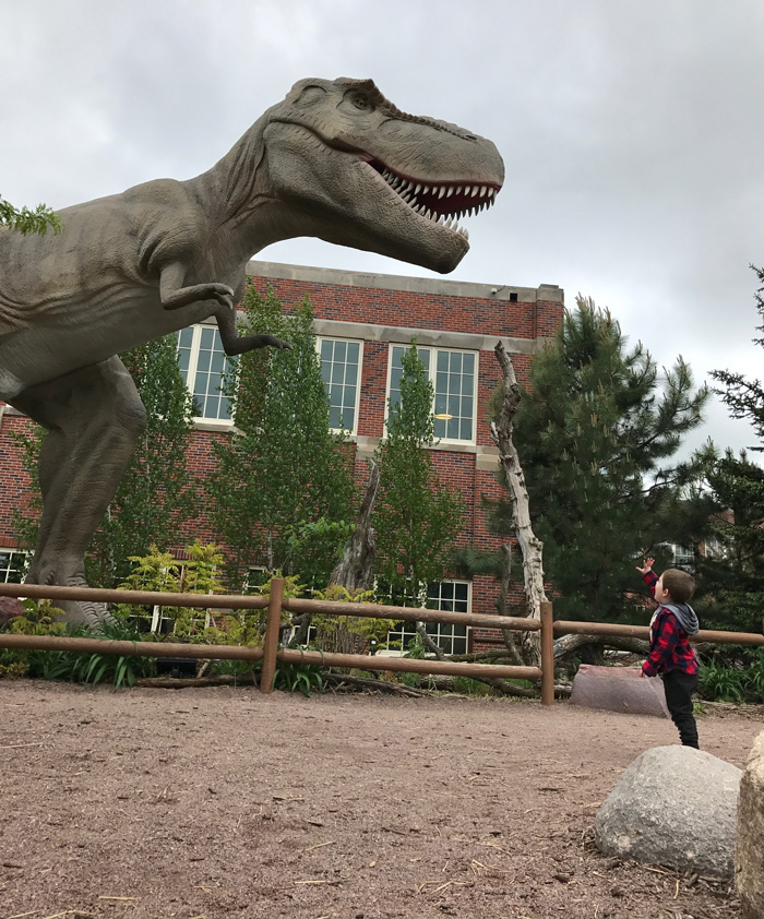 Young boy waving at giant Trex dinosaur on Children's Museum of South Dakota prairie.