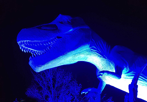 Tyrannosaurus Rex Lights Up Blue in Honor of Frontline Workers