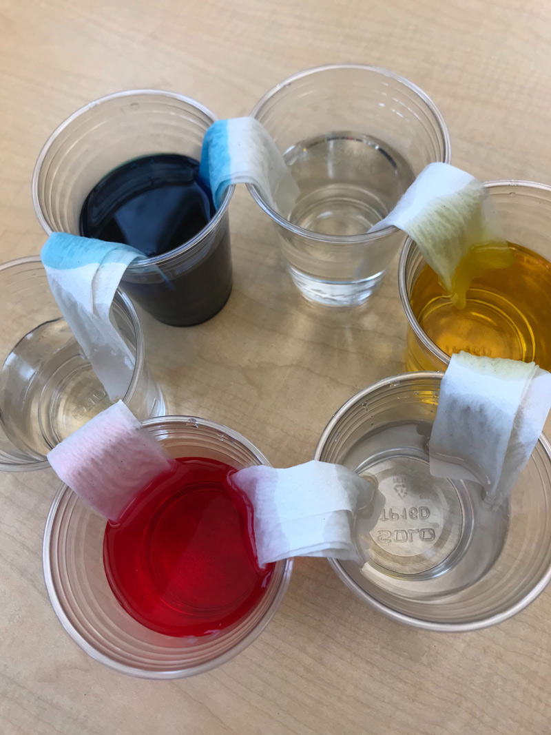 Clear cups with color in them. Paper towels overlapping between the cups.