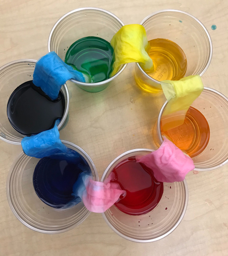 Clear cups with food coloring and paper towels between them making a rainbow