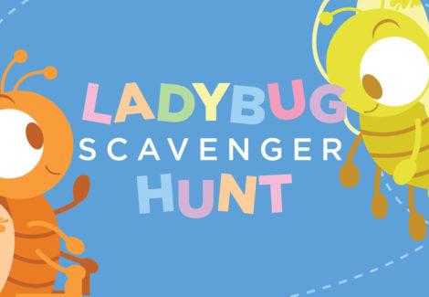 Ladybug Scavenger Hunt